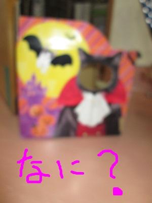 B1なに?IMG_0911.jpg