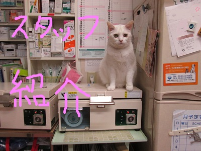 J1スタッフ紹介IMG_5439.JPG