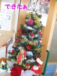 n13クリスマスツリーpictIMG_4308.jpg