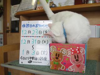 o13お休みのご案内pictIMG_4514.jpg