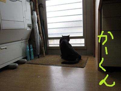 s1かーくん窓IMG_2751.jpg